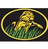 Grassland Enterprises, Inc.